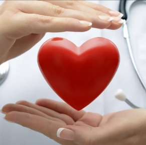 10 most healthful products for the heart and blood vessels.